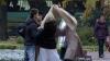 В ЗАГСе Петербурга у итальянского жениха украли невесту
