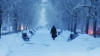 Украина и США также оказались под циклоном сильных морозов