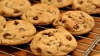 Предприниматель из Ниспорен производит печенье из конопли, фруктозы и муки из виноградных косточек
