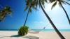 Куда поехать на 8 марта: турагентства подготовили специальные предложения отдыха