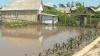 Правительство выделит почти 15 млн леев на ликвидацию последствий стихийных бедствий