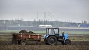 Метеорологи называют погодные условия благоприятными для хорошего урожая