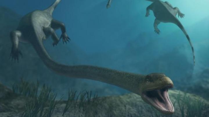 В Китае нашли беременного динозавра возрастом 250 млн лет