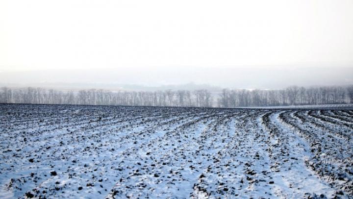 Два родных брата замерзли насмерть в поле под Саратовом