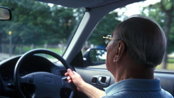 Ученые определили, в каком возрасте опасно садиться за руль