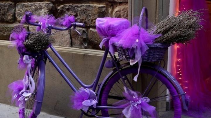 Группа энтузиастов устроила велопробег в канун Дня Святого Валентина