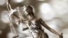 Подросток из Петербурга отсудил у РФ 25 тысяч евро за издевательства в детсаду