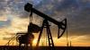 Россия снизила добычу нефти на 185 тысяч баррелей в сутки
