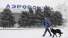 Агентство Reuters написало о задержании заместителя генпрокурора Молдовы в Домодедово