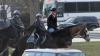 Новый глава МВД США приехал на работу верхом на лошади