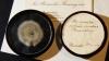 90-летнюю плесень продали за 15 тысяч долларов на аукционе