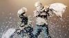 Невежественные маляры уничтожили работы художника Бэнкси