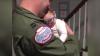 Малыш в новых очках впервые увидел своего отца после долгой разлуки