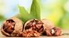 В Яловенах обыскали две фирмы, которые занимаются экспортом ореховых ядер