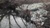 Волонтеры собрали около тонны мусора с берегов реки Бык