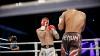 Важный этап в карьере бойца К-1 Александра Препелицэ