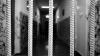 Апелляционная палата отклонила запрос об освобождении Ивана Козера