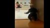 Малыш забавно подражал старшей сестре в балетном классе: видео