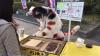 Торгующий картофелем музыкальный кот покорил пользователей сети