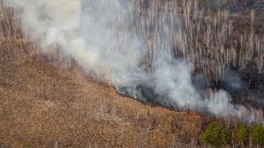 За последние сутки в Молдове сгорели 130 гектаров сухой растительности