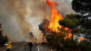 Четыре штата в США серьезно пострадали от лесных пожаров