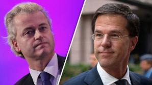 В Нидерландах избирают парламент, участках ждут 12,6 млн избирателей