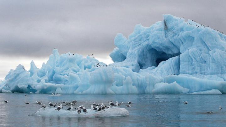 Ученые выяснили, когда Арктика станет полностью свободной ото льда