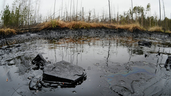 В подмосковную реку слили 50 тонн нефти