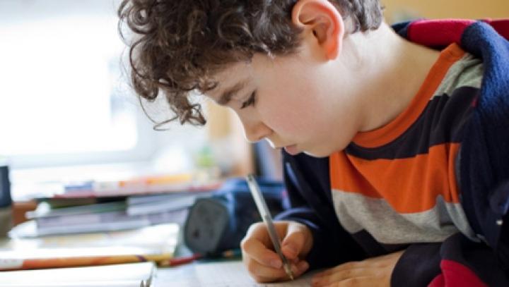 Румынский онлайн-словарь наказал школьников за списывание