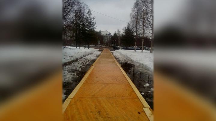 Архангельские чиновники заложили тротуар паркетом