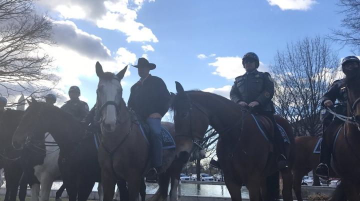 Новый министр иностранных дел США приехал на работу верхом на лошади