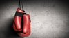 12-летний сын Вячеслава Гожана Дэнуц делает успехи в боксе