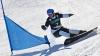 В состязаниях по сноускайтингу участвовали 350 человек