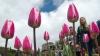 В Лондоне создали сад-мемориал к 20-летию гибели принцессы Дианы
