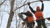 Муниципалитет объявил о нехватке рабочих и спецтехники