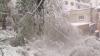Снежный апокалипсис миновал, грядут наводнения