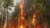 На землях Минобороны РФ в Бурятии произошел пожар