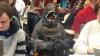 Американский профессор привела на занятия сына в костюме Годзиллы