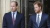 Принцы Уильям и Гарри призвали мужчин не избегать психологов