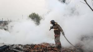 В Сибири ввели режим чрезвычайной ситуации из-за пожаров