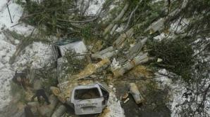 Последствия разгула стихии: ямы, раздавленные автомобили и поваленные деревья