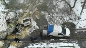 «Предприимчивые» кишинёвцы придумали, что делать с поваленными деревьями