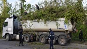 """Второй день """"генеральной уборки"""" в Кишинёве: какие улицы будут труднодоступны"""
