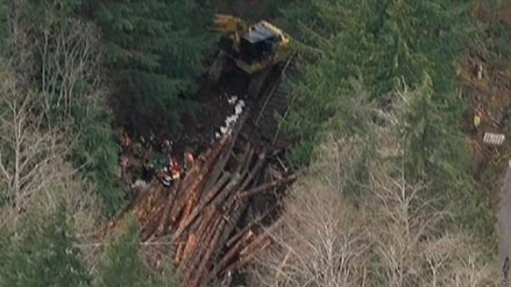 В Канаде при сходе с рельсов поезда с древесиной погибли два человека