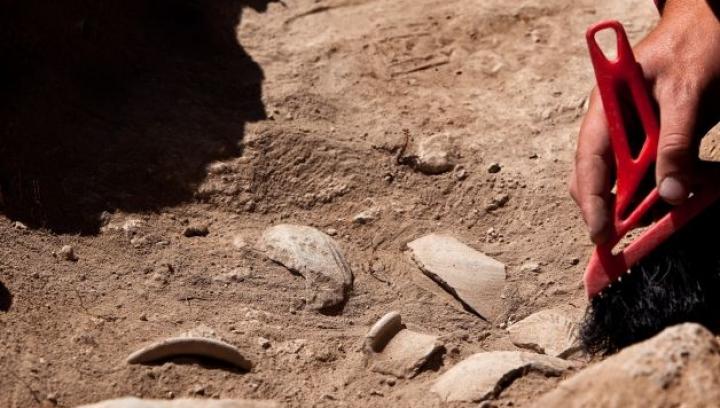 Под трассой в Великобритании рабочие нашли римский клад