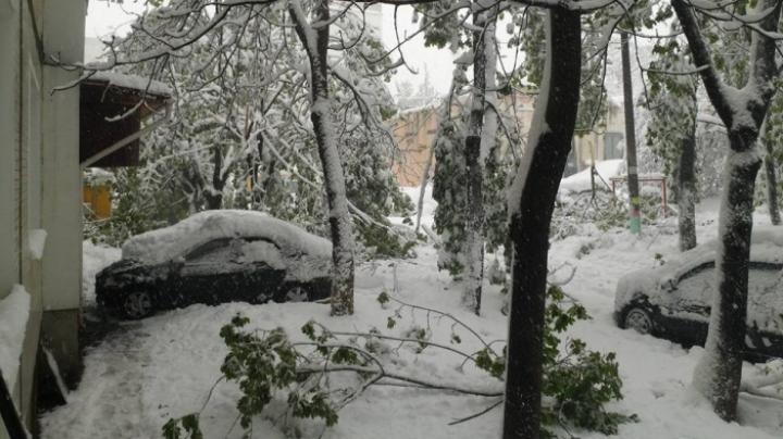 Павел Филип: после снегопада ожидается наводнение
