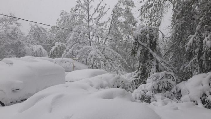 Апрельский снегопад парализовал столицу: транспорт не ходит!