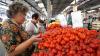 Диетологи назвали вредным самый популярный салат из огурцов и помидоров