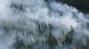 В Сибири в течение суток от пожаров спасли восемь тысяч человек