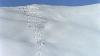 При сходе лавины во французских Альпах погибли трое лыжников